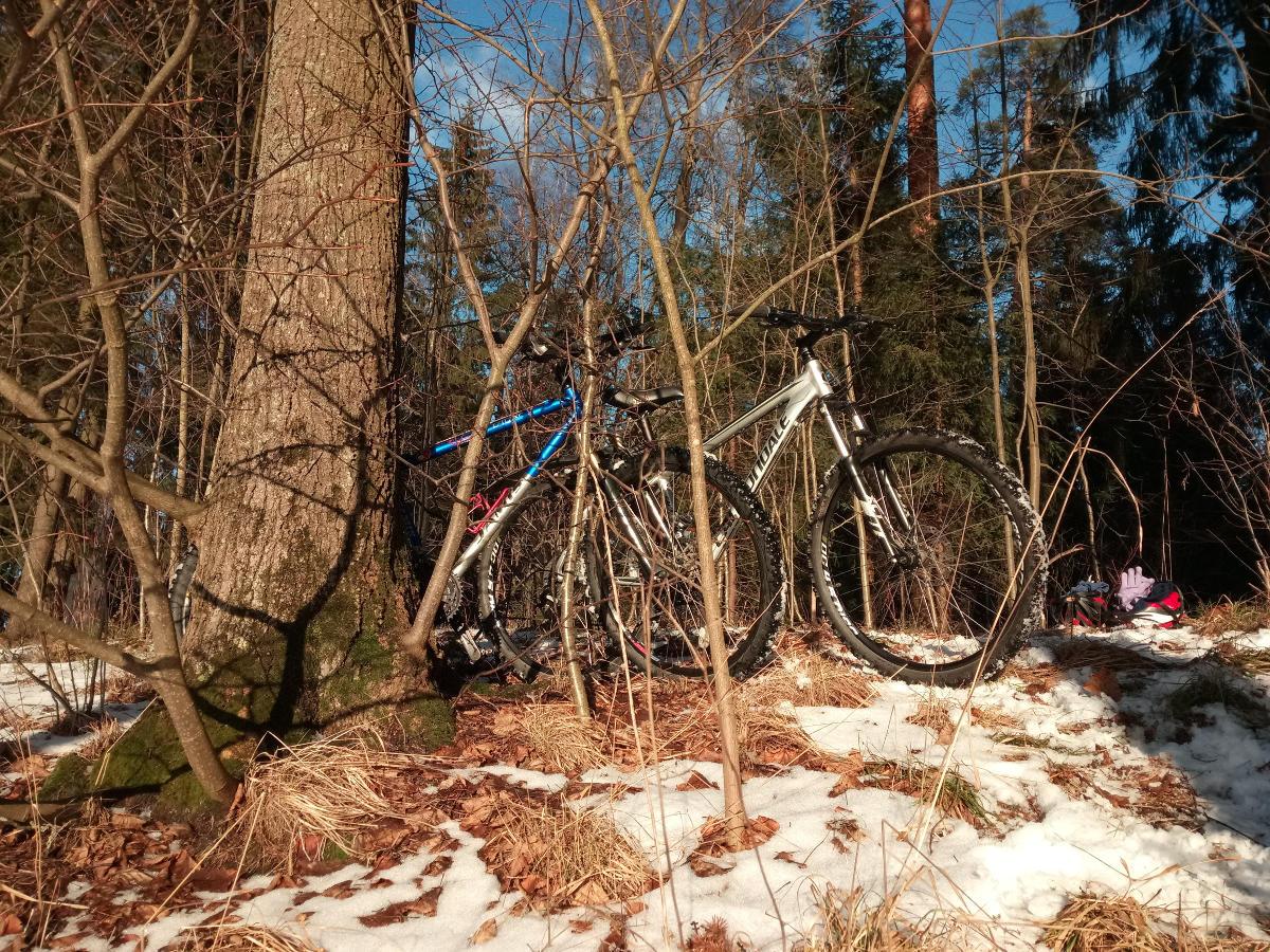 Велосипед весной